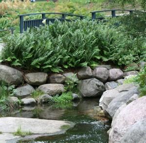 Aarrepuisto_puro_luonnonkivet